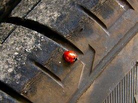 Центр по ремонту колес